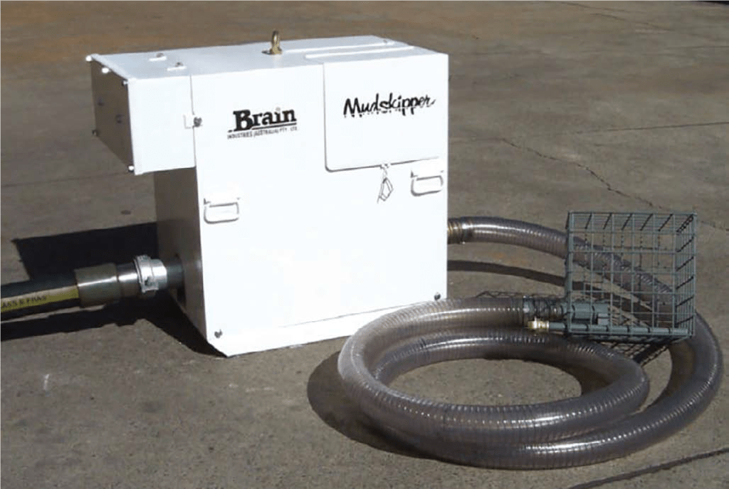 brain mudskipper pumps